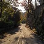 The road to Emirgan Park